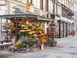 محل زهور رينيه شينميتز