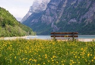 مقعد خشبى على شاطىء بحيرة جنيف
