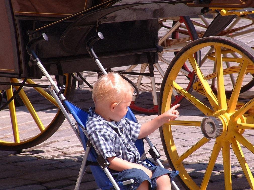 دفل يلعب فى عجلة سيارة يجرها الخيل